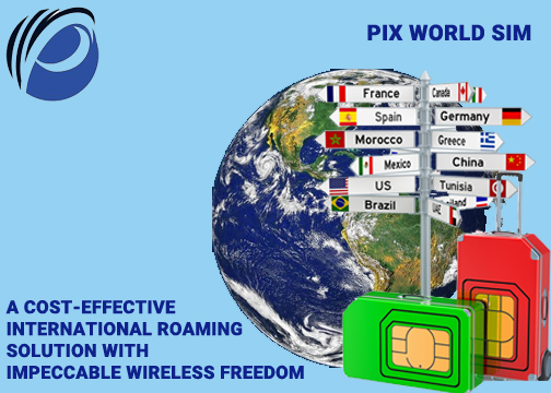 Wireless Traveler Global SIM Card